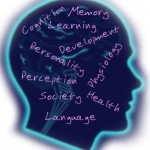 Learning Centers in the Brain